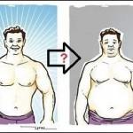 Werden meine Muskeln zu Fettgewebe, wenn ich mit meinem Training aufhöre?