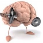 Training fürs Gehirn – Diesen Muskel sollte man auf keinen Fall vergessen