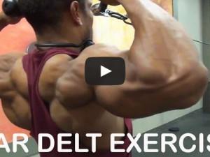 Übungen für die hintere Schulter