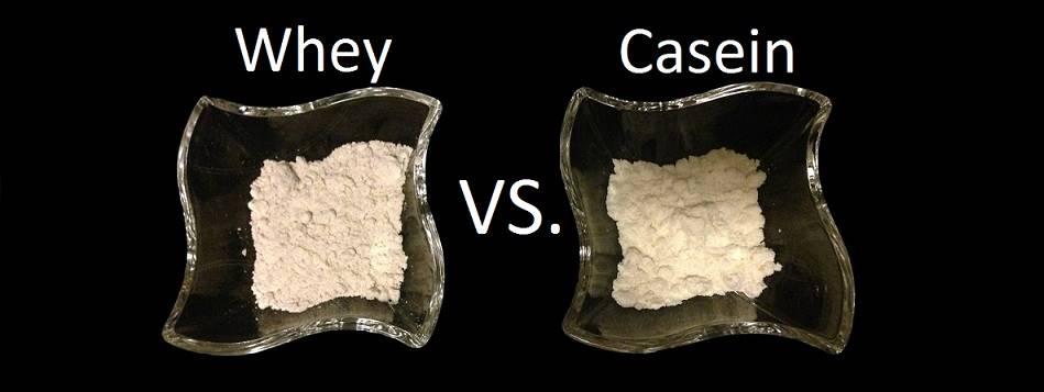 Whey Oder Casein Protein Welches Wann Egal Moremuscles De