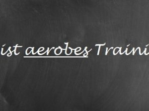 Aerobes Training